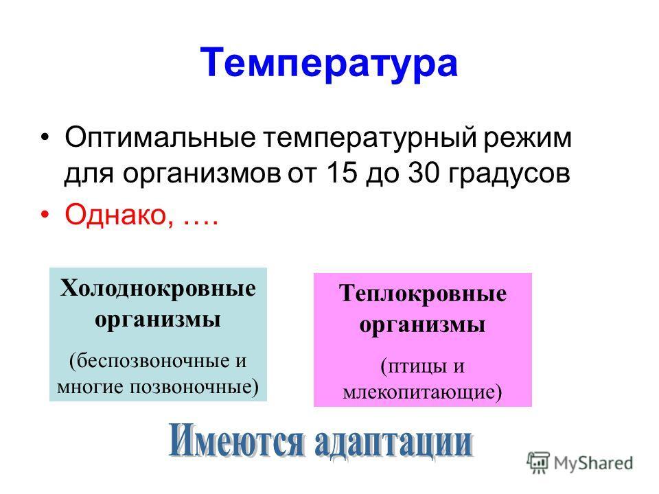 Температура Оптимальные температурный режим для организмов от 15 до 30 градусов Однако, …. Холоднокровные организмы (беспозвоночные и многие позвоночные) Теплокровные организмы (птицы и млекопитающие)