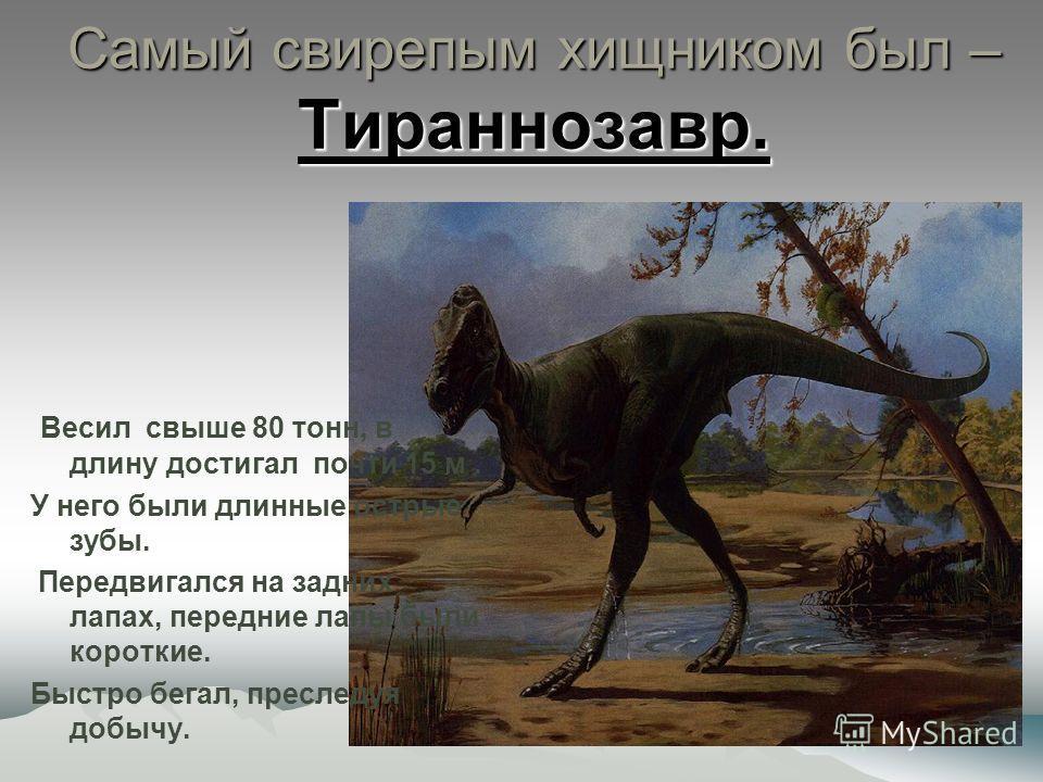 Самый свирепым хищником был – Тираннозавр. Весил свыше 80 тонн, в длину достигал почти 15 м. У него были длинные острые зубы. Передвигался на задних лапах, передние лапы были короткие. Быстро бегал, преследуя добычу.