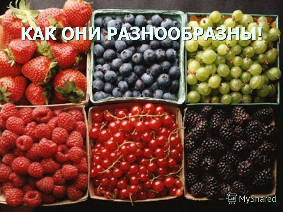 А вот фруктов и ягод и овощей– как можно больше