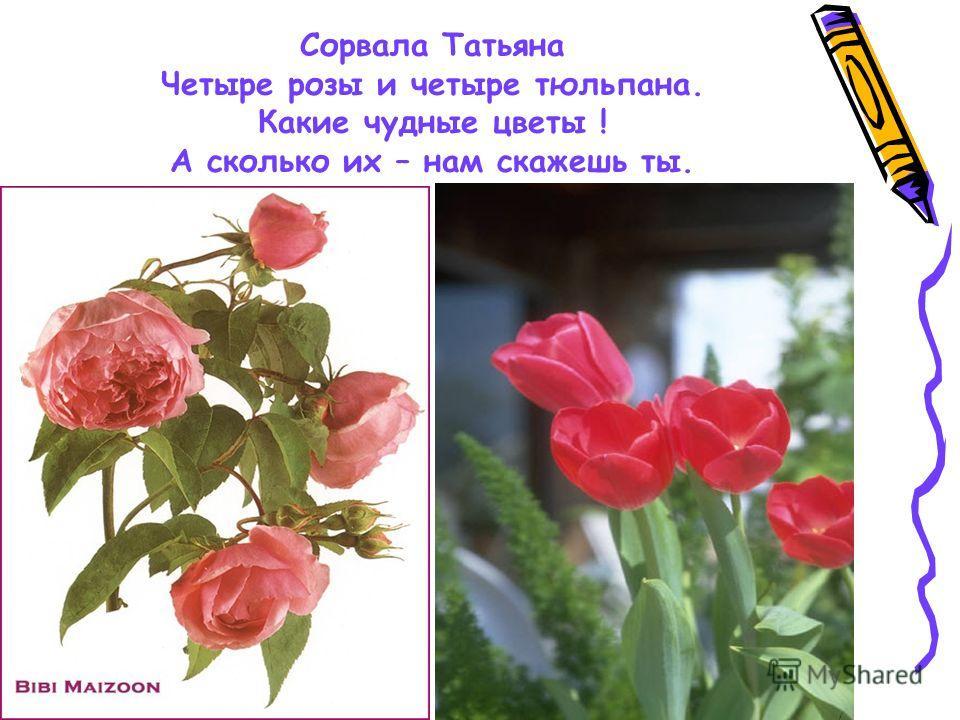 Сорвала Татьяна Четыре розы и четыре тюльпана. Какие чудные цветы ! А сколько их – нам скажешь ты.