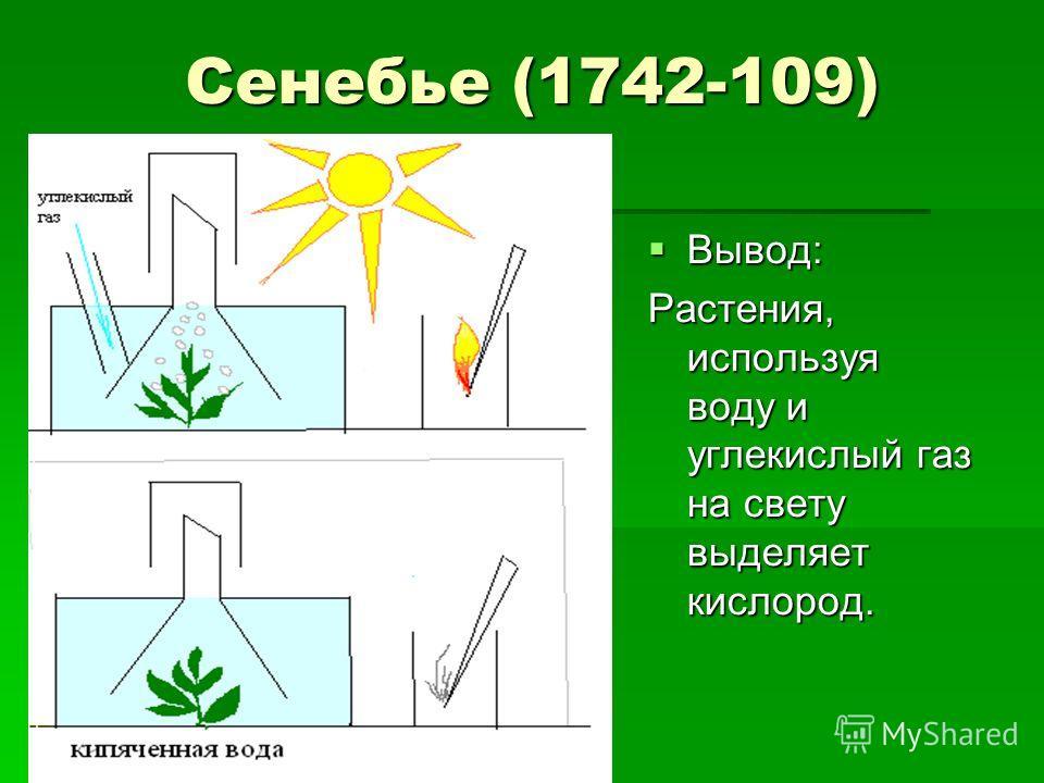 Сенебье (1742-109) Вывод: Растения, используя воду и углекислый газ на свету выделяет кислород.