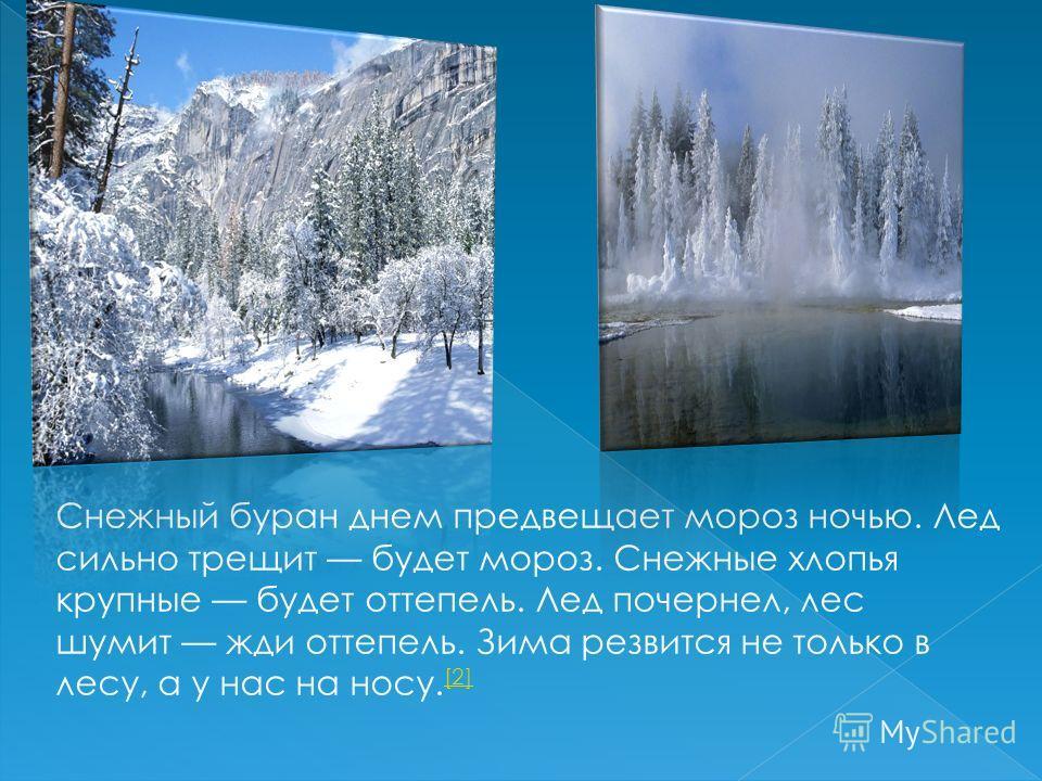 Снежный буран днем предвещает мороз ночью. Лед сильно трещит будет мороз. Снежные хлопья крупные будет оттепель. Лед почернел, лес шумит жди оттепель. Зима резвится не только в лесу, а у нас на носу. [2] [2]