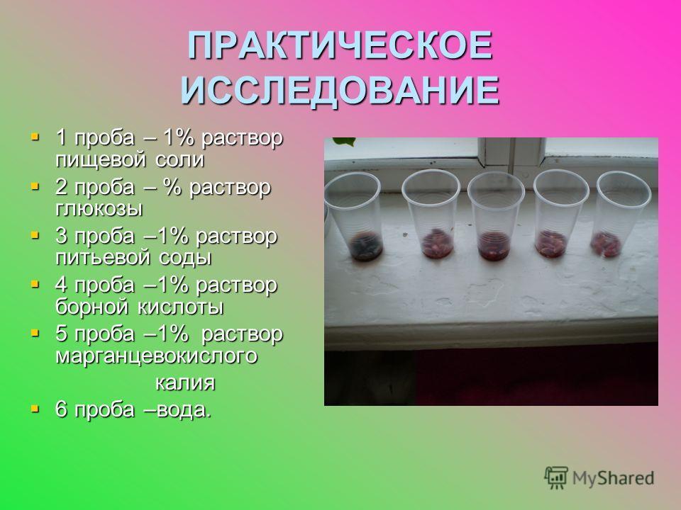 ПРАКТИЧЕСКОЕ ИССЛЕДОВАНИЕ 1 проба – 1% раствор пищевой соли 1 проба – 1% раствор пищевой соли 2 проба – % раствор глюкозы 2 проба – % раствор глюкозы 3 проба –1% раствор питьевой соды 3 проба –1% раствор питьевой соды 4 проба –1% раствор борной кисло
