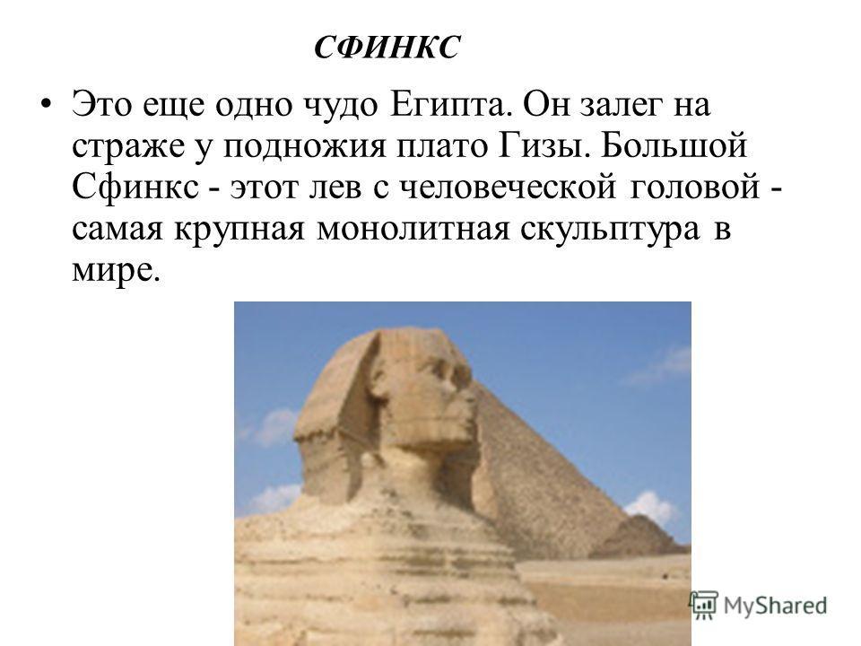 СФИНКС Это еще одно чудо Египта. Он залег на страже у подножия плато Гизы. Большой Сфинкс - этот лев с человеческой головой - самая крупная монолитная скульптура в мире.