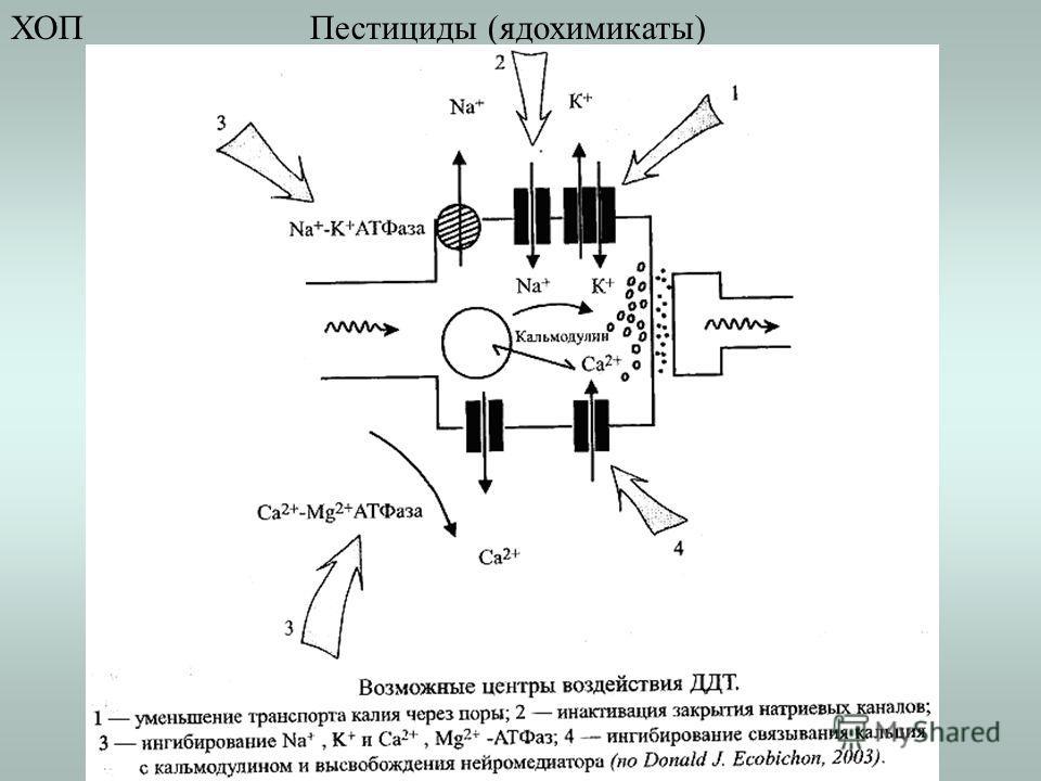 Пестициды (ядохимикаты)ХОП