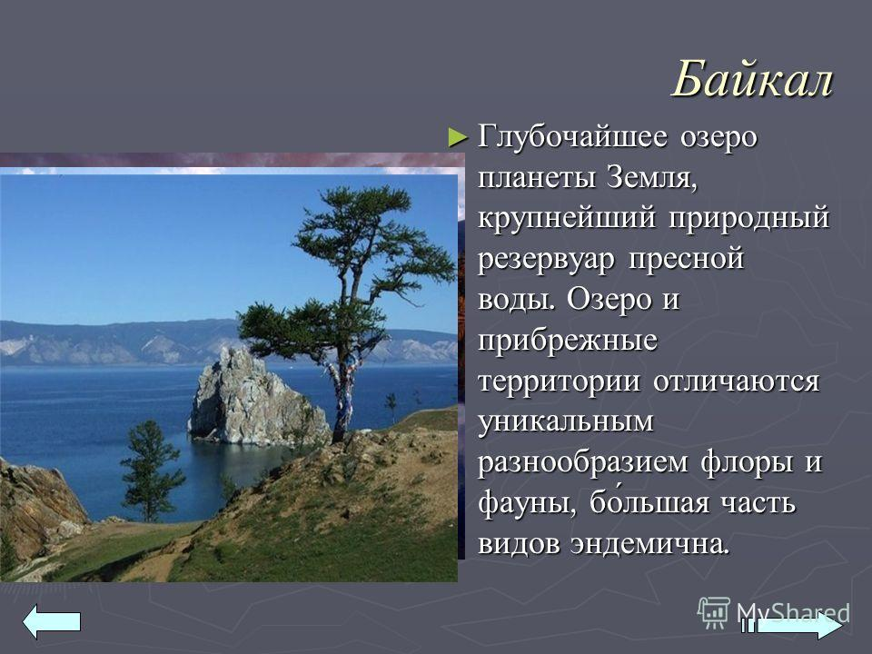 Байкал Глубочайшее озеро планеты Земля, крупнейший природный резервуар пресной воды. Озеро и прибрежные территории отличаются уникальным разнообразием флоры и фауны, бо́льшая часть видов эндемична. Глубочайшее озеро планеты Земля, крупнейший природны