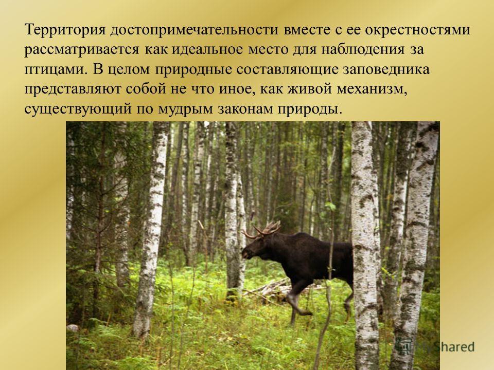 Территория достопримечательности вместе с ее окрестностями рассматривается как идеальное место для наблюдения за птицами. В целом природные составляющие заповедника представляют собой не что иное, как живой механизм, существующий по мудрым законам пр