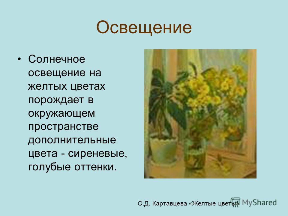 Освещение Солнечное освещение на желтых цветах порождает в окружающем пространстве дополнительные цвета - сиреневые, голубые оттенки. О.Д. Картавцева «Желтые цветы»