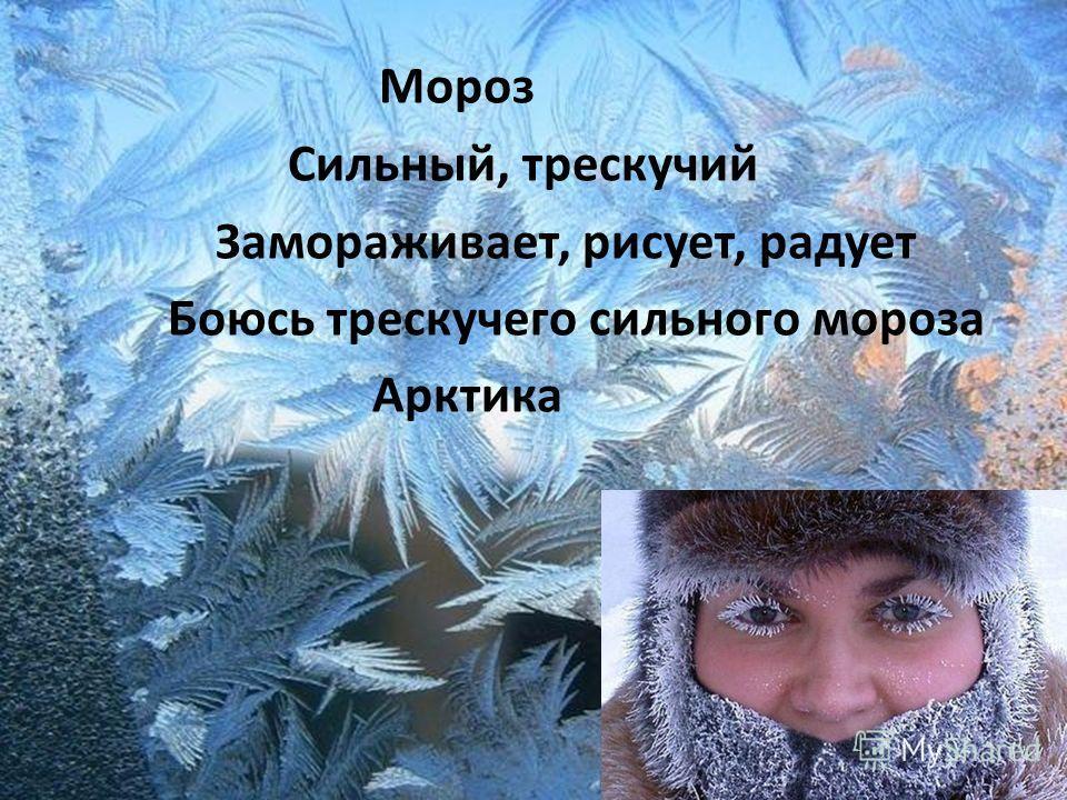 Мороз Сильный, трескучий Замораживает, рисует, радует Боюсь трескучего сильного мороза Арктика