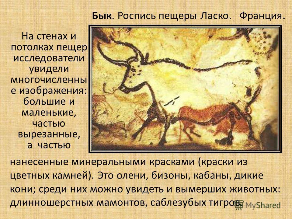 На стенах и потолках пещер исследователи увидели многочисленны е изображения: большие и маленькие, частью вырезанные, а частью нанесенные минеральными красками (краски из цветных камней). Это олени, бизоны, кабаны, дикие кони; среди них можно увидеть