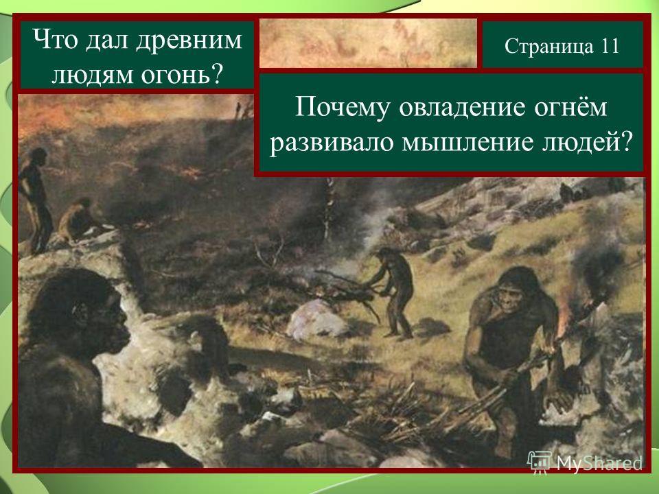 Страница 11 Что дал древним людям огонь? Почему овладение огнём развивало мышление людей?