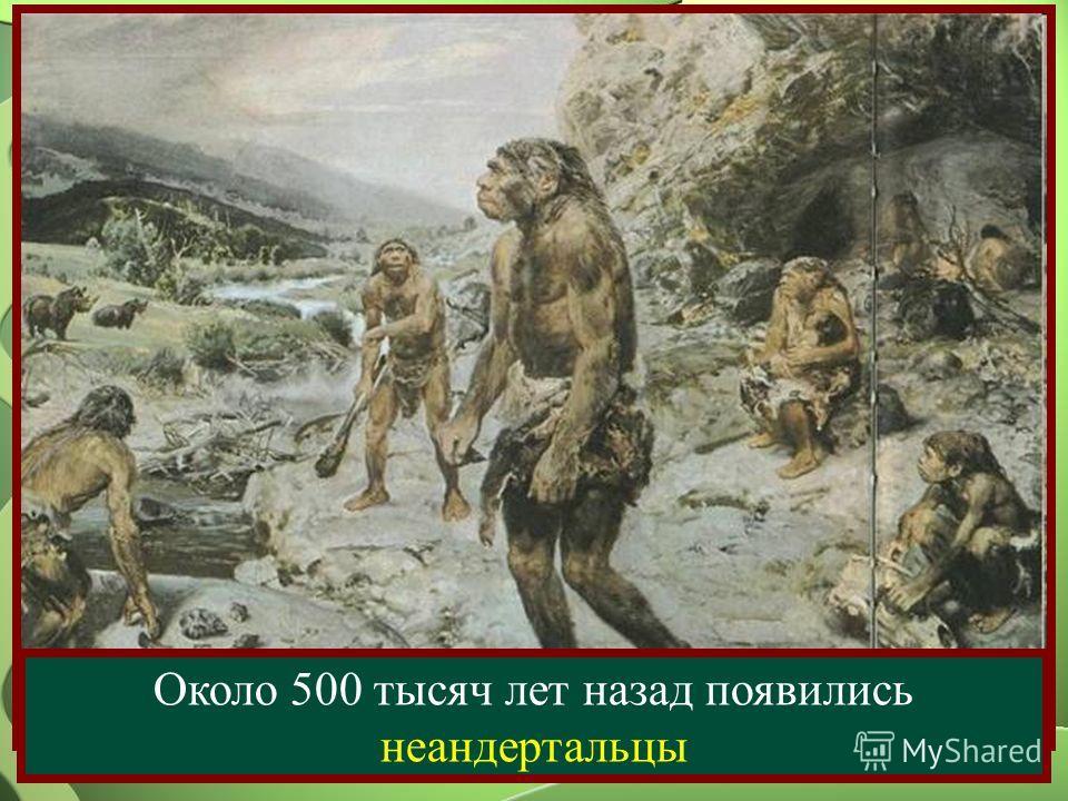 Около 500 тысяч лет назад появились неандертальцы