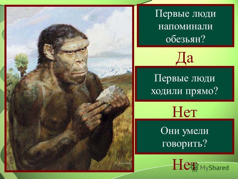 Первые люди напоминали обезьян? Да Первые люди ходили прямо? Нет Они умели говорить? Нет