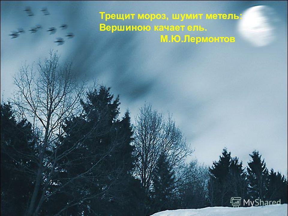Трещит мороз, шумит метель: Вершиною качает ель. М.Ю.Лермонтов