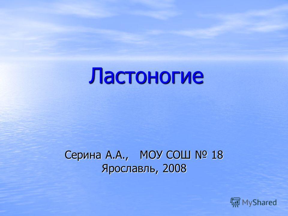 Ластоногие Серина А.А., МОУ СОШ 18 Ярославль, 2008