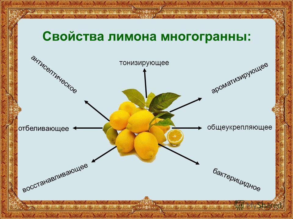 Свойства лимона многогранны: антисептическое восстанавливающее бактерицидное ароматизирующее общеукрепляющее отбеливающее тонизирующее
