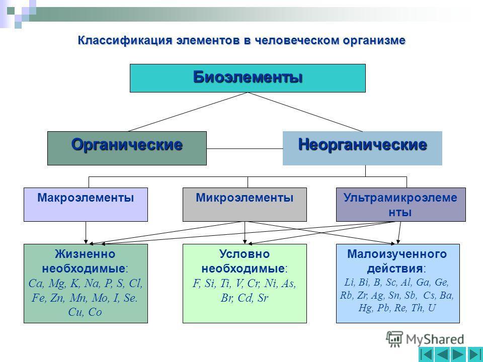 Классификация элементов в человеческом организме Биоэлементы НеорганическиеОрганические МакроэлементыМикроэлементыУльтрамикроэлеме нты Жизненно необходимые: Ca, Mg, K, Na, P, S, Cl, Fe, Zn, Mn, Mo, I, Se. Cu, Co Условно необходимые: F, Si, Ti, V, Cr,