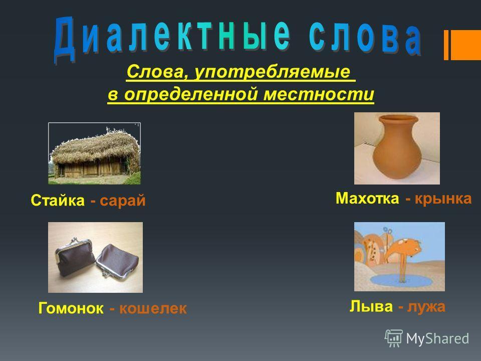 Слова, употребляемые в определенной местности Стайка - сарай Махотка - крынка Гомонок - кошелек Лыва - лужа