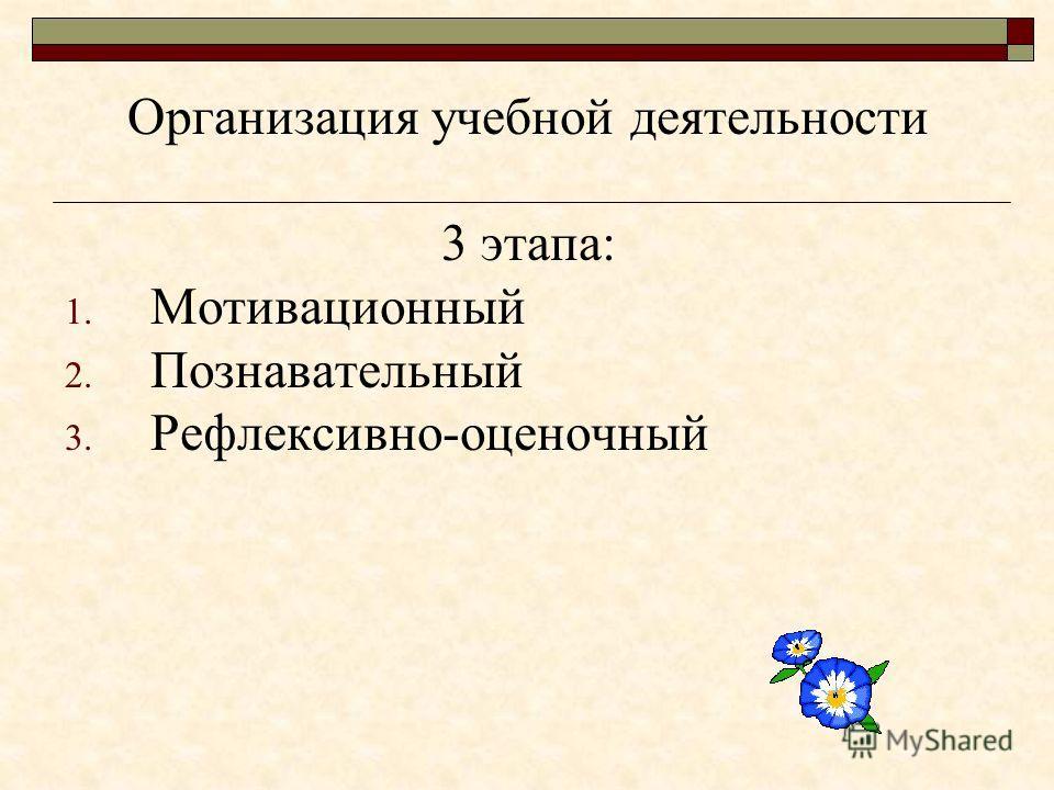 Организация учебной деятельности 3 этапа: 1. Мотивационный 2. Познавательный 3. Рефлексивно-оценочный