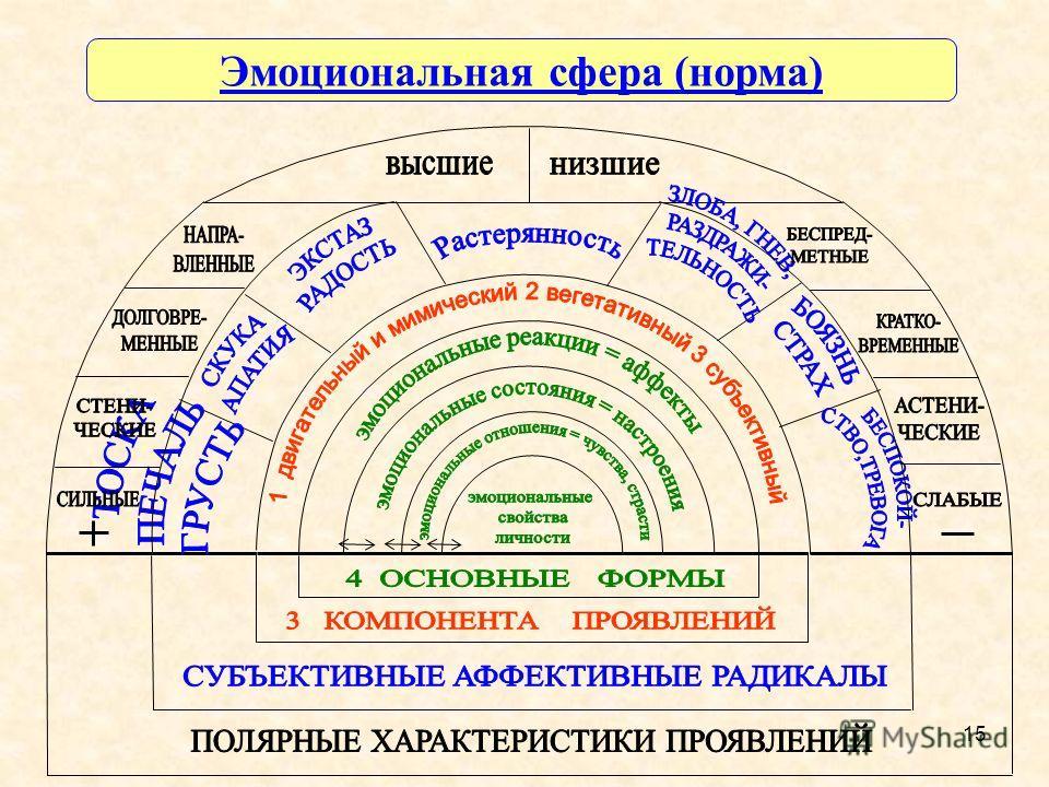 15 Эмоциональная сфера (норма)
