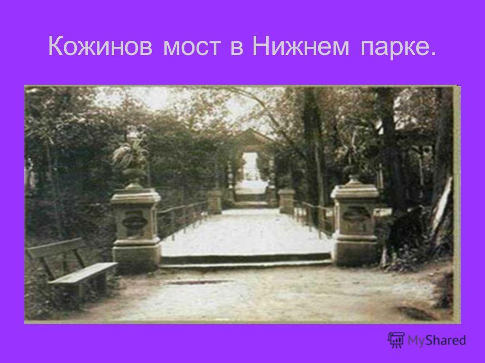 Кожинов мост в Нижнем парке.