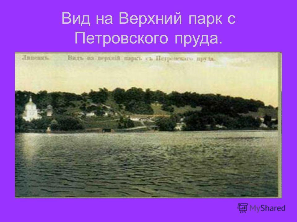 Вид на Верхний парк с Петровского пруда.