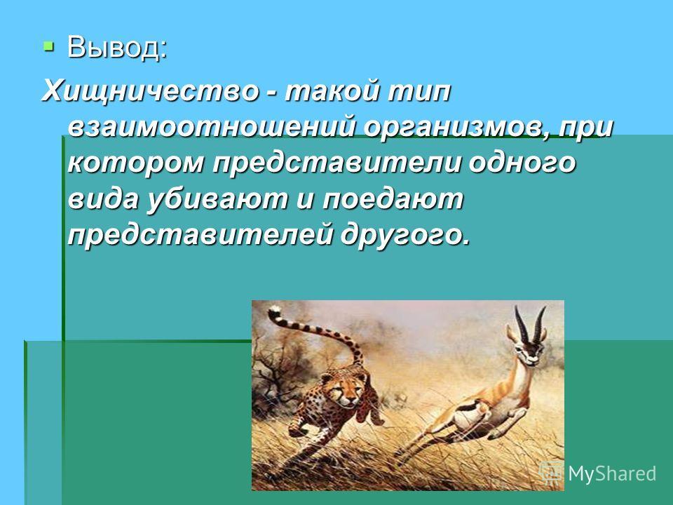 Вывод: Вывод: Хищничество - такой тип взаимоотношений организмов, при котором представители одного вида убивают и поедают представителей другого.