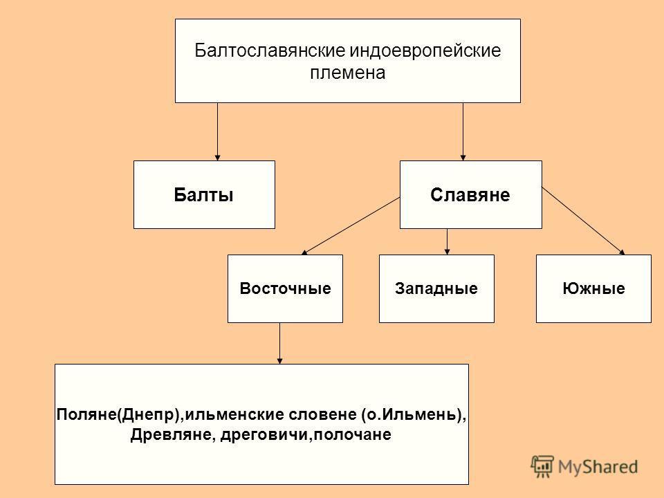 История 6 классс племена балтов