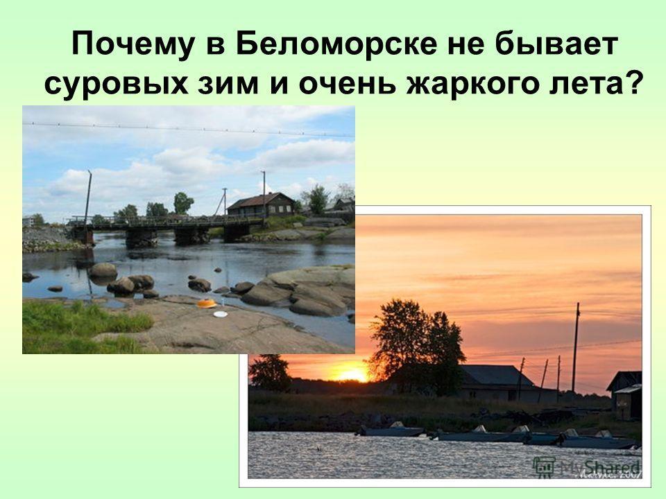Почему в Беломорске не бывает суровых зим и очень жаркого лета?
