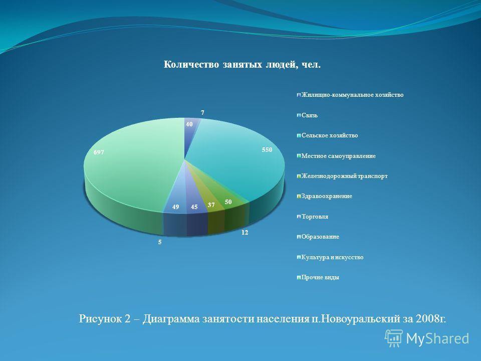 Рисунок 2 – Диаграмма занятости населения п.Новоуральский за 2008г.