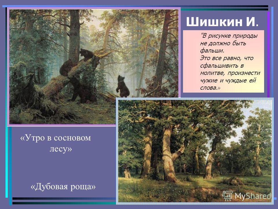 Шишкин И. «Дубовая роща» «Утро в сосновом лесу» В рисунке природы не должно быть фальши. Это все равно, что сфальшивить в молитве, произнести чужие и чуждые ей слова. »