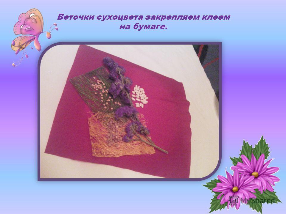 Веточки сухоцвета закрепляем клеем на бумаге.