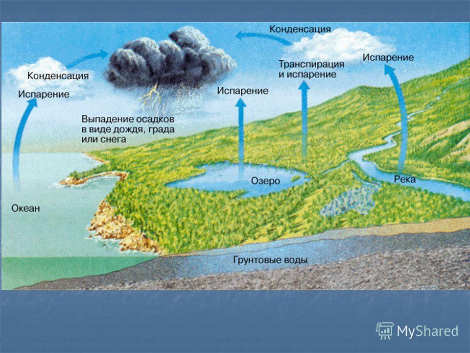 Осреднённая для всего земного шара скорость испарения составляет около 2,5 мм в сутки. Осреднённая для всего земного шара скорость испарения составляет около 2,5 мм в сутки. В целом она уравновешена величиной среднеглобального количества атмосферных