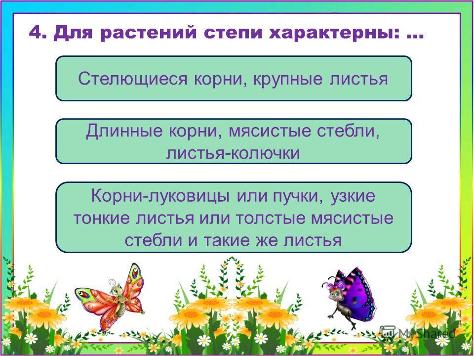 Корни-луковицы или пучки, узкие тонкие листья или толстые мясистые стебли и такие же листья Стелющиеся корни, крупные листья Длинные корни, мясистые стебли, листья-колючки 4. Для растений степи характерны: …