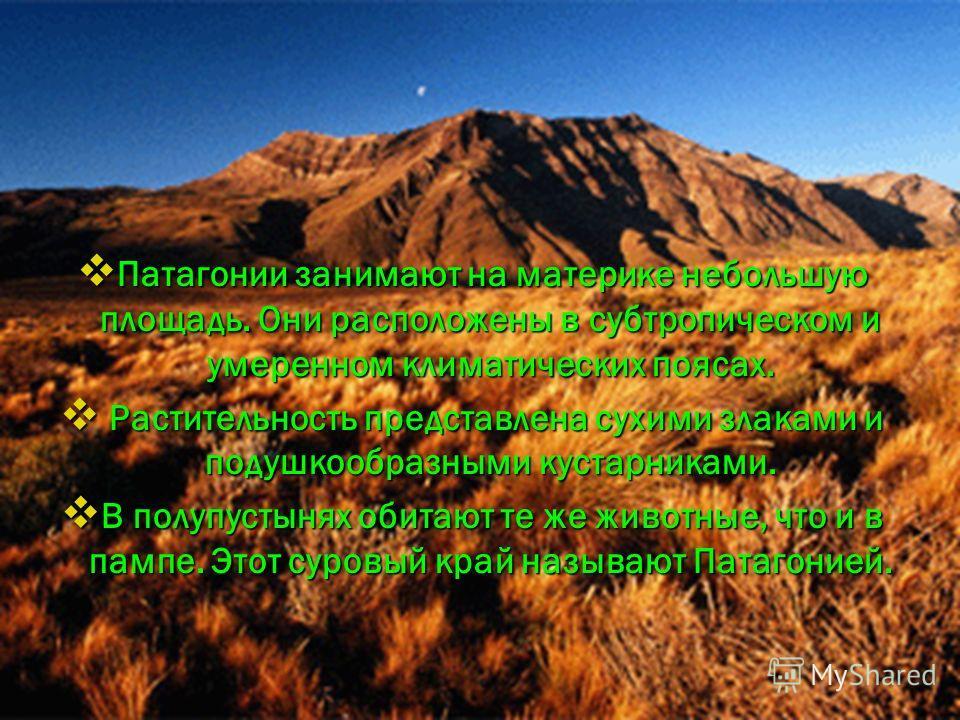 Патагонии занимают на материке небольшую площадь. Они расположены в субтропическом и умеренном климатических поясах. Патагонии занимают на материке небольшую площадь. Они расположены в субтропическом и умеренном климатических поясах. Растительность п