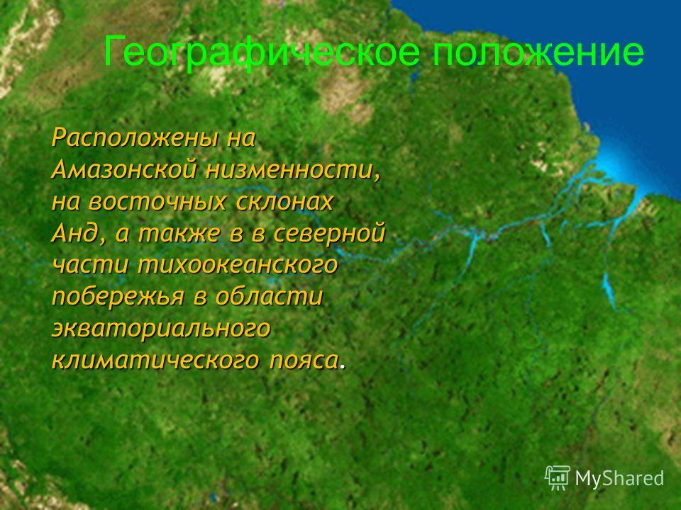 Расположены на Амазонской низменности, на восточных склонах Анд, а также в в северной части тихоокеанского побережья в области экваториального климатического пояса. Географическое положение