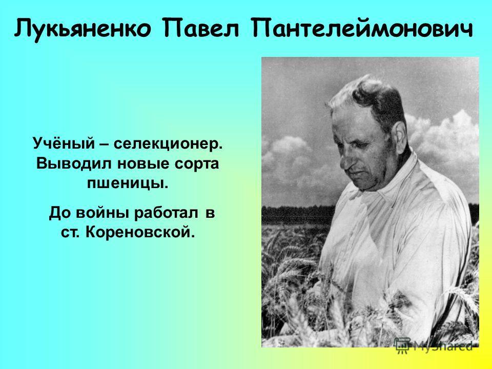 Лукьяненко Павел Пантелеймонович Учёный – селекционер. Выводил новые сорта пшеницы. До войны работал в ст. Кореновской.