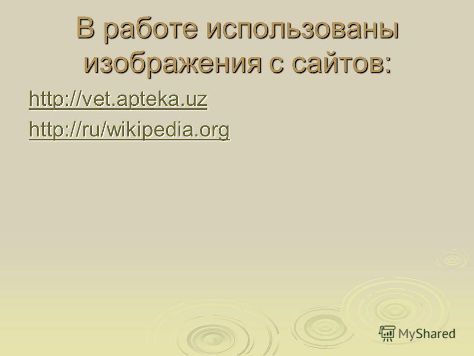 В работе использованы изображения с сайтов: http://vet.apteka.uz http://ru/wikipedia.org