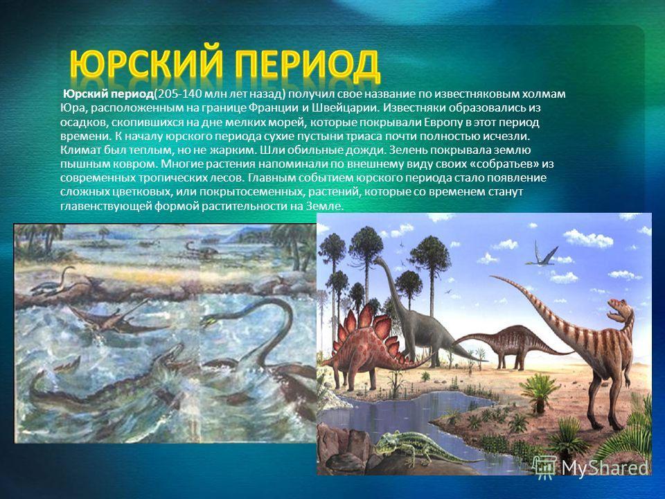 Юрский период(205-140 млн лет назад) получил свое название по известняковым холмам Юра, расположенным на границе Франции и Швейцарии. Известняки образовались из осадков, скопившихся на дне мелких морей, которые покрывали Европу в этот период времени.