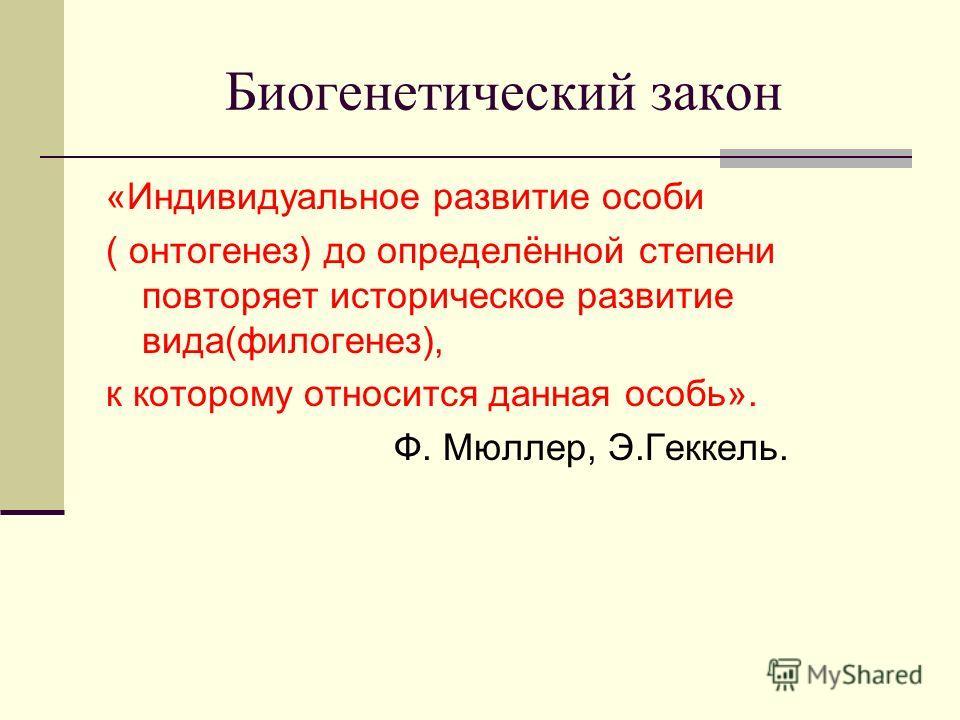 Биогенетический закон «Индивидуальное развитие особи ( онтогенез) до определённой степени повторяет историческое развитие вида(филогенез), к которому относится данная особь». Ф. Мюллер, Э.Геккель.