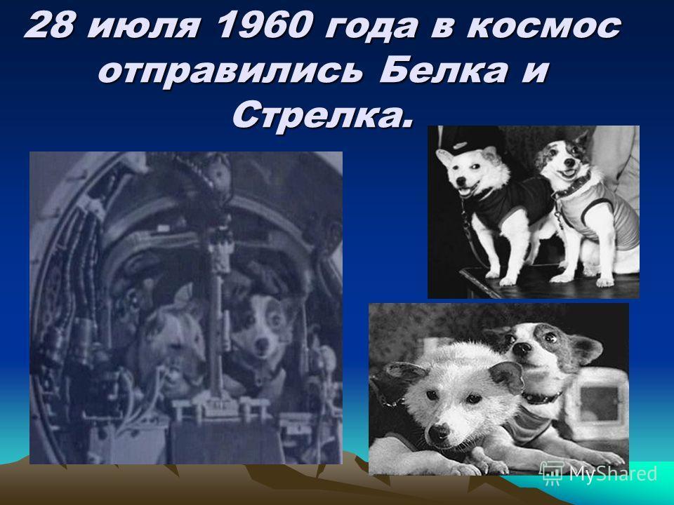 28 июля 1960 года в космос отправились Белка и Стрелка.