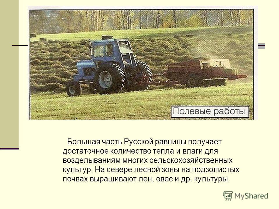 Большая часть Русской равнины получает достаточное количество тепла и влаги для возделываниям многих сельскохозяйственных культур. На севере лесной зоны на подзолистых почвах выращивают лен, овес и др. культуры.