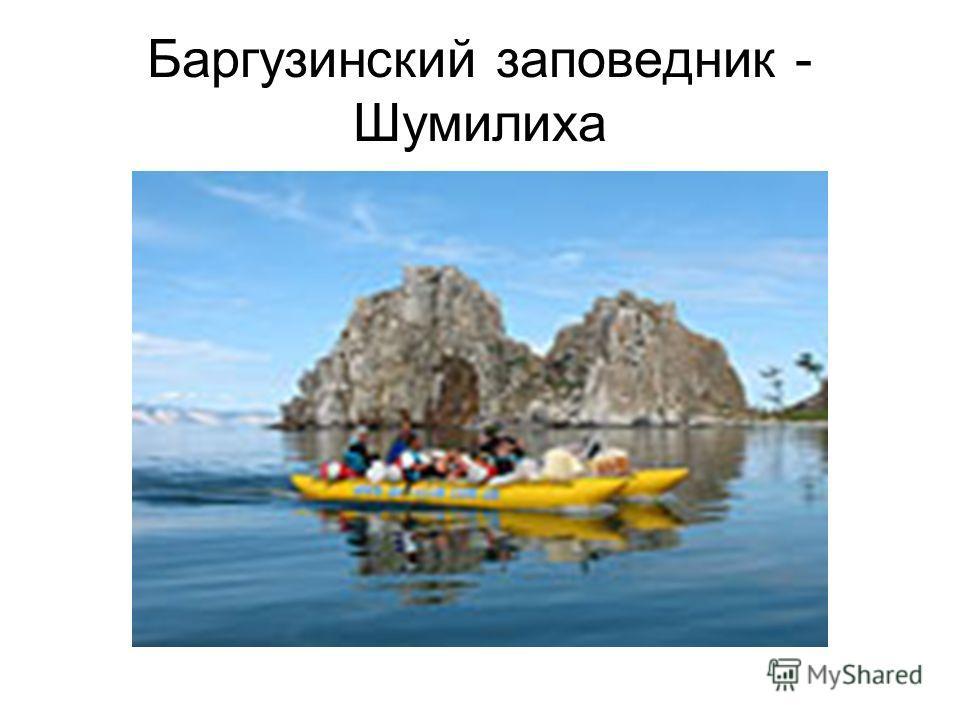 Баргузинский заповедник - Шумилиха