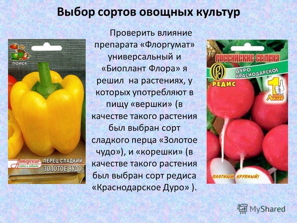 Выбор сортов овощных культур Проверить влияние препарата «Флоргумат» универсальный и «Биоплант Флора» я решил на растениях, у которых употребляют в пищу «вершки» (в качестве такого растения был выбран сорт сладкого перца «Золотое чудо»), и «корешки»