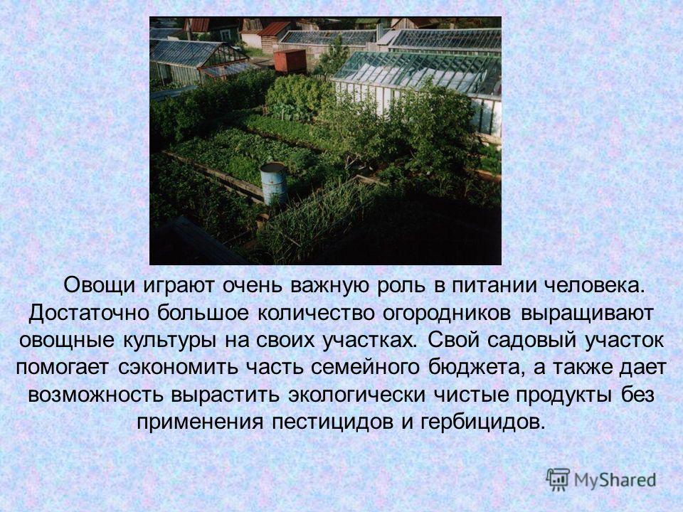eyhman-adolf
