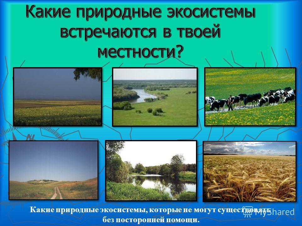 Какие природные экосистемы, которые не могут существовать без посторонней помощи.