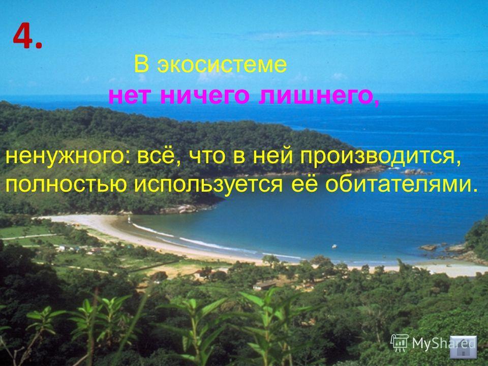 В экосистеме нет ничего лишнего, ненужного: всё, что в ней производится, полностью используется её обитателями. 4.