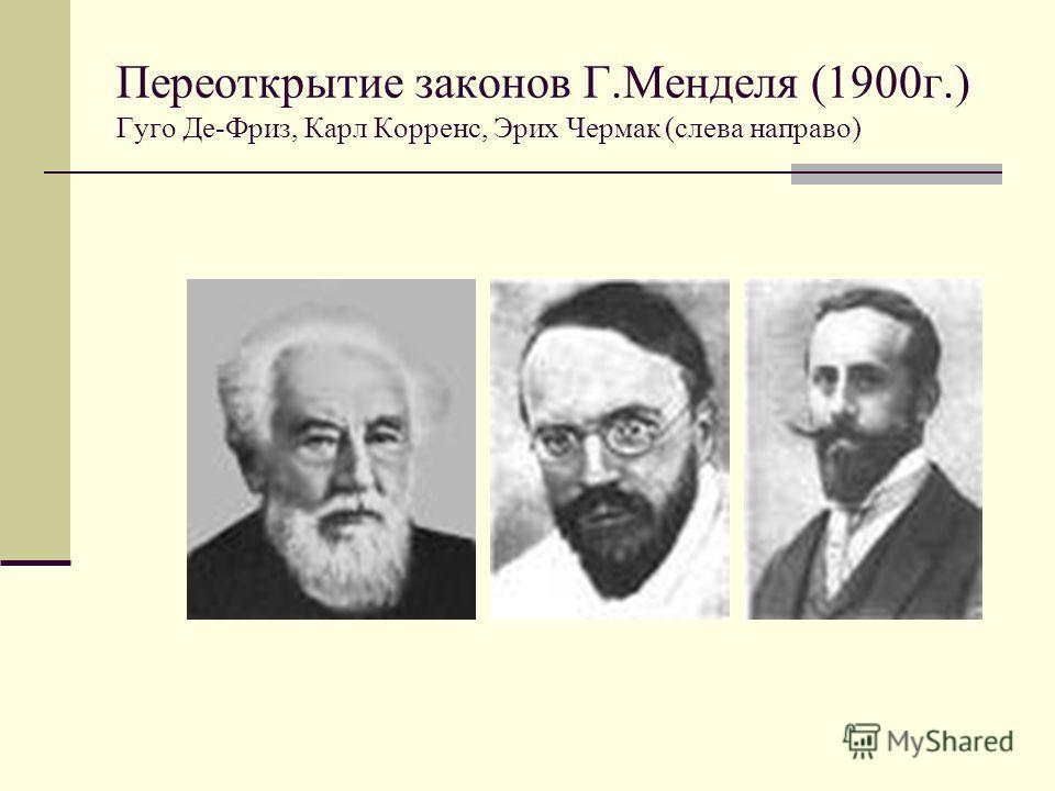 Переоткрытие законов Г.Менделя (1900г.) Гуго Де-Фриз, Карл Корренс, Эрих Чермак (слева направо)