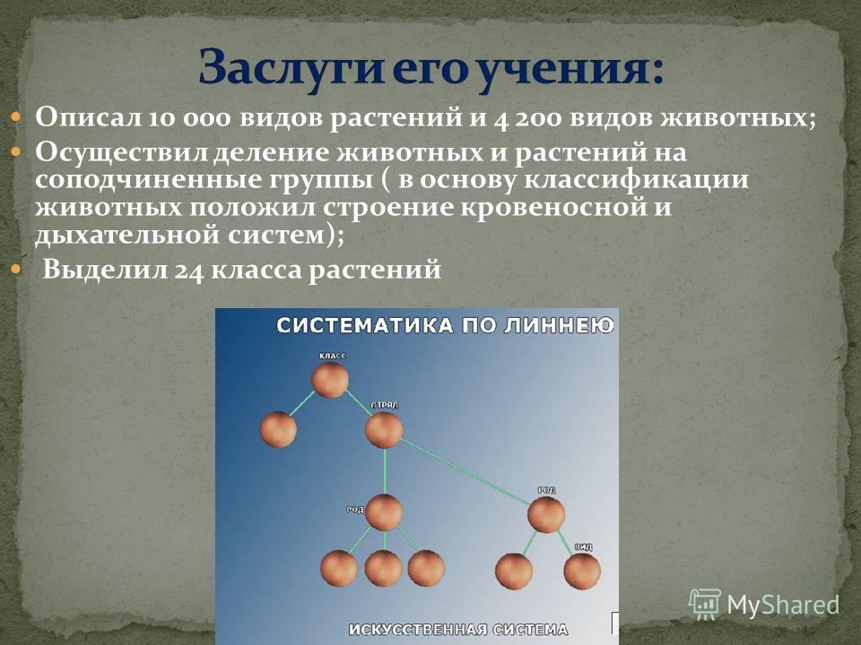 Описал 10 000 видов растений и 4 200 видов животных; Осуществил деление животных и растений на соподчиненные группы ( в основу классификации животных положил строение кровеносной и дыхательной систем); Выделил 24 класса растений