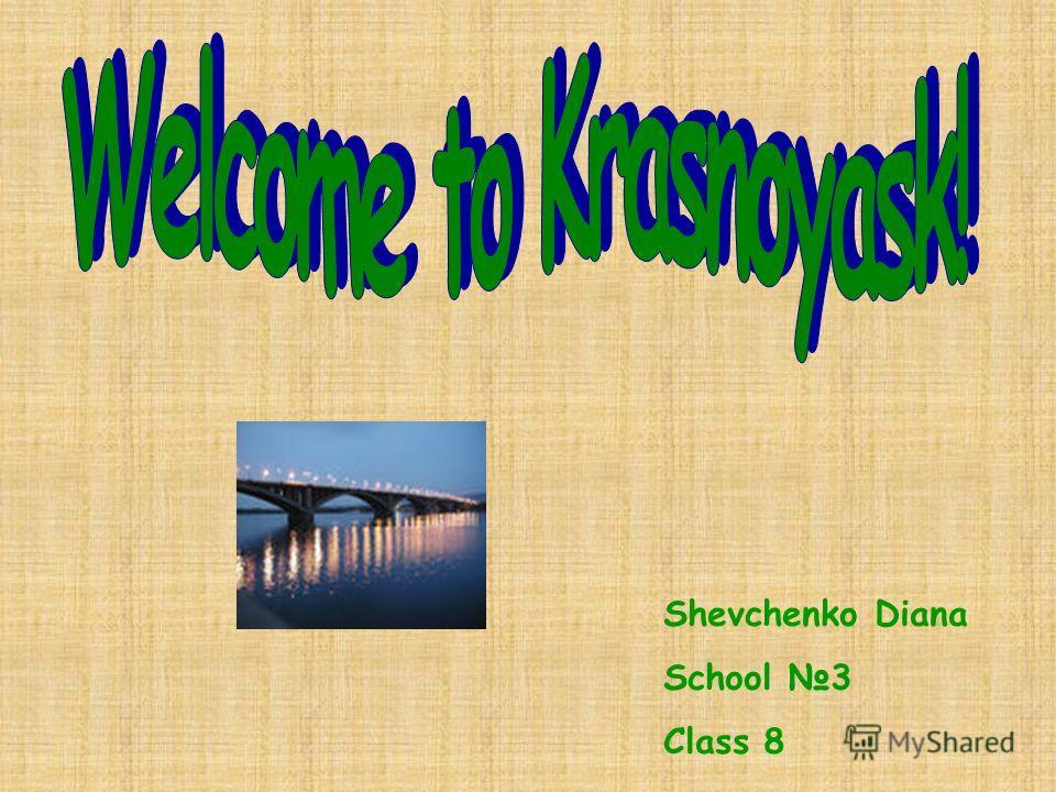 Shevchenko Diana School 3 Class 8